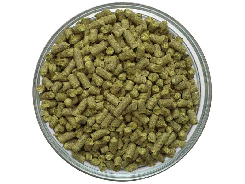 UK Kent Goldings Pellet Hops