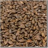 Weyermann Chocolate Rye Malted Grain - Maillard Malts