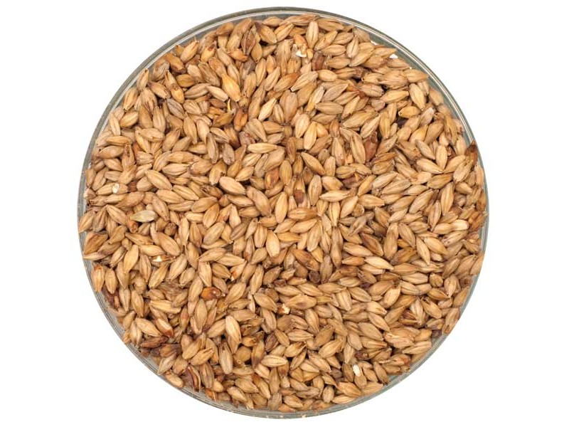 Dingemans Aromatic Malt