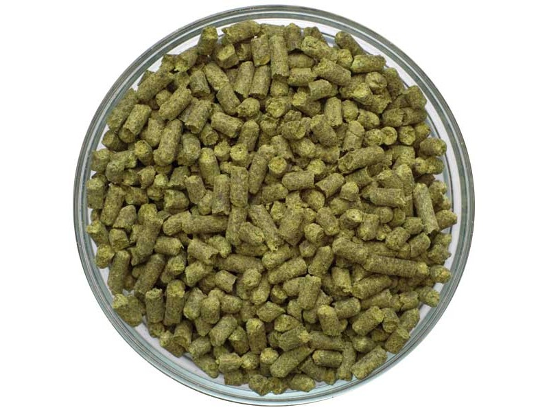 Styrian Goldings Pellet Hops