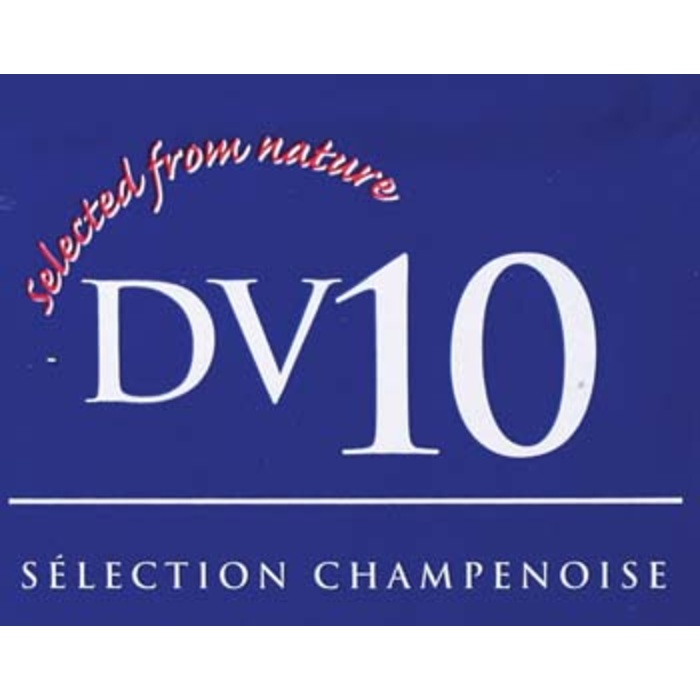 DV10 - Dry Wine Yeast