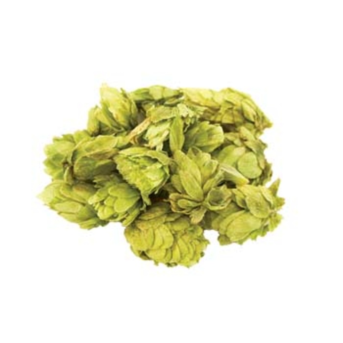 Willamette Leaf Hops
