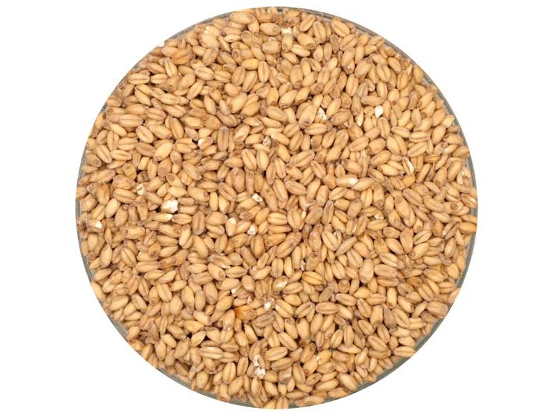 Canada Malting Wheat Malt