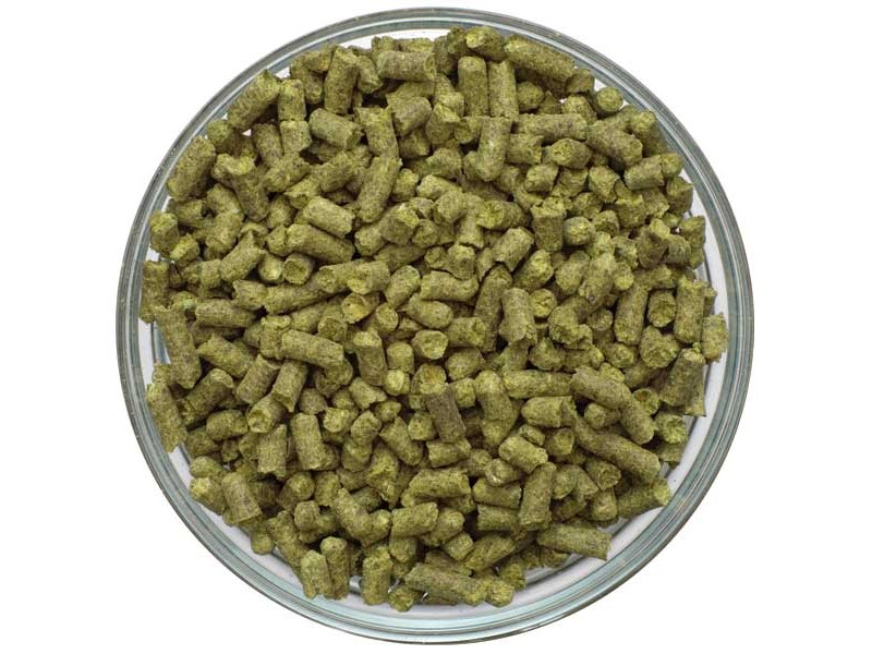 UK Northdown Pellet Hops