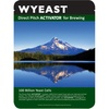 Wyeast Private Collection Belgian Dark Ale Yeast