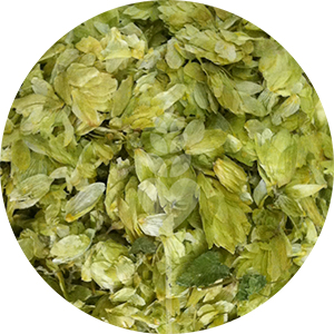Sterling Leaf Hops