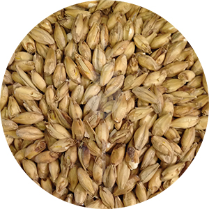 2-Row Brewers Malt (Briess)