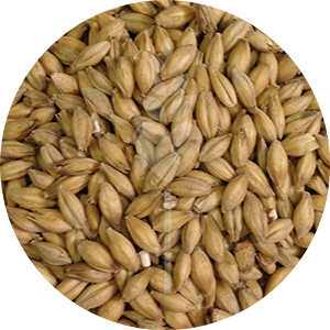 English Pale Malt (Crisp)