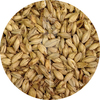 6-Row Brewer's Malt  (Briess)