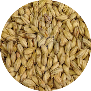 2-Row Pale Malt  (Briess)