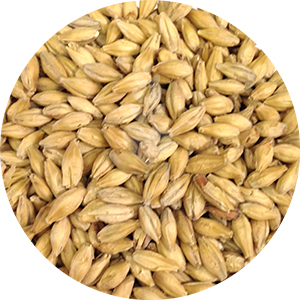 German Pale Malt (Weyermann)